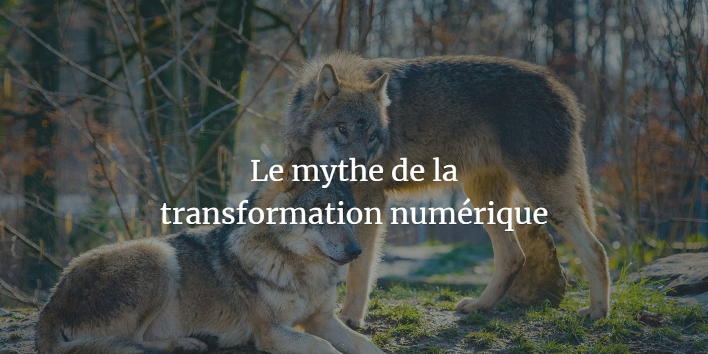Le mythe de la transformation numérique